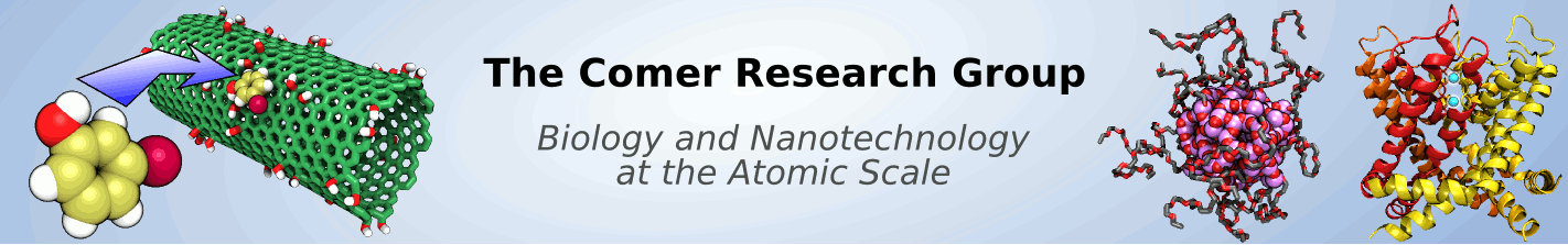 The Comer Group: Biology and Nanotechnology at the Atomic Scale